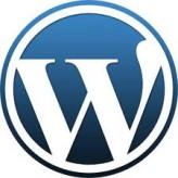 WordPress ile Smtp Kimlik Doğrulamalı İletişim Formu Kurulum